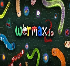 wormax2io.com widget
